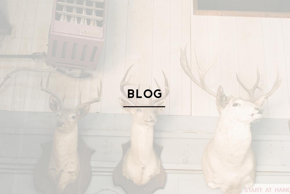blog home.jpg