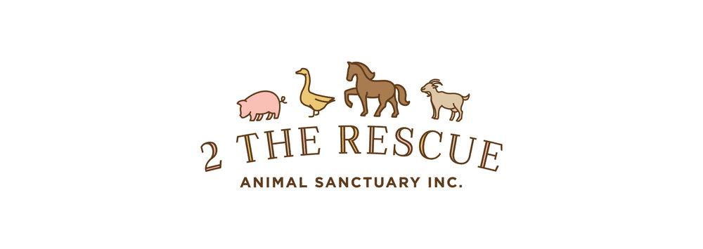 Rescue_Portfolio_Images-03.jpg