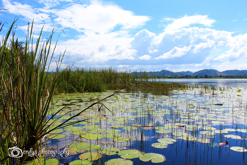 Lake Peten Itza - Flores, Guatemala
