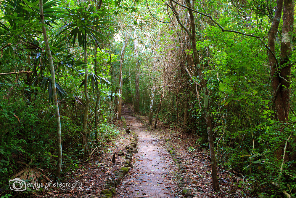 Cerro Biotope Cahui -El Remate, Guatemala