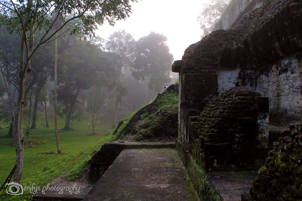 Ruins of Tikal -Tikal National Park, Guatemala