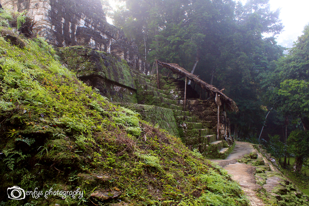 Ruins of Tikal -Tikal National Park
