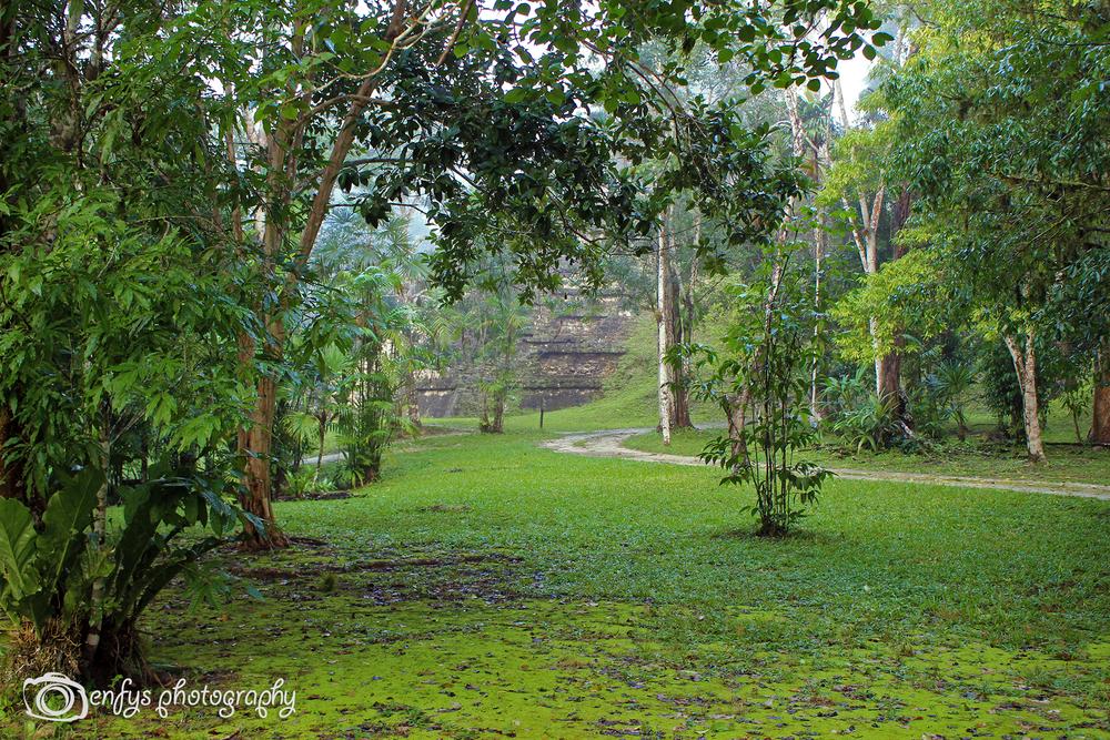 -Tikal National Park - Guatemala