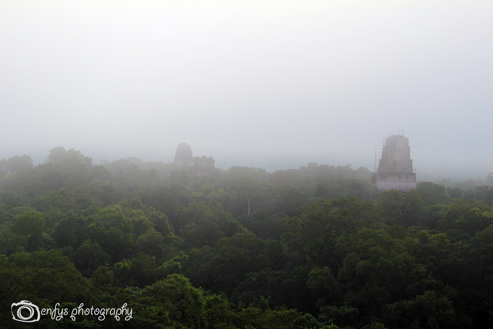 More Temples popping out from beneath the mist!  -Tikal National Park, Guatemala