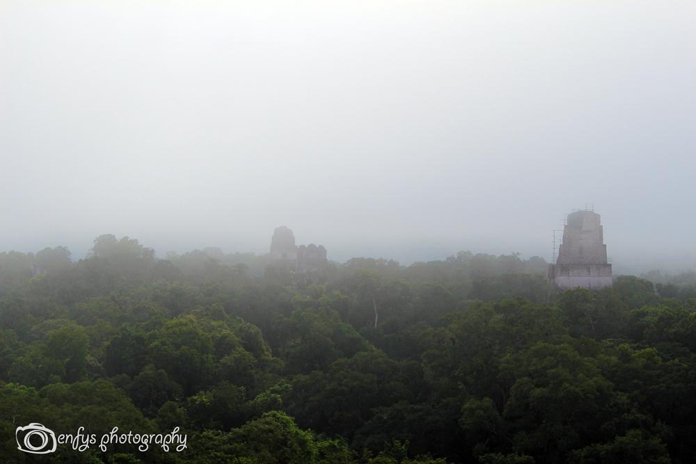 -Tikal National Park, Guatemala