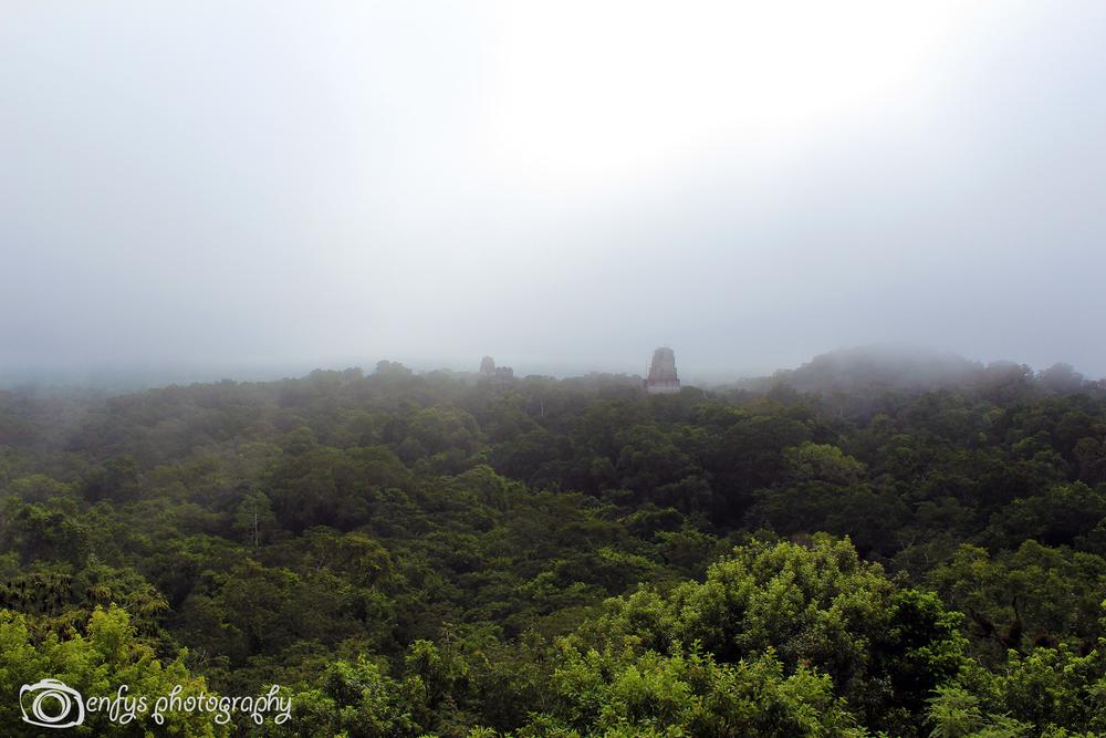 Temple Four -Tikal National Park, Guatemala