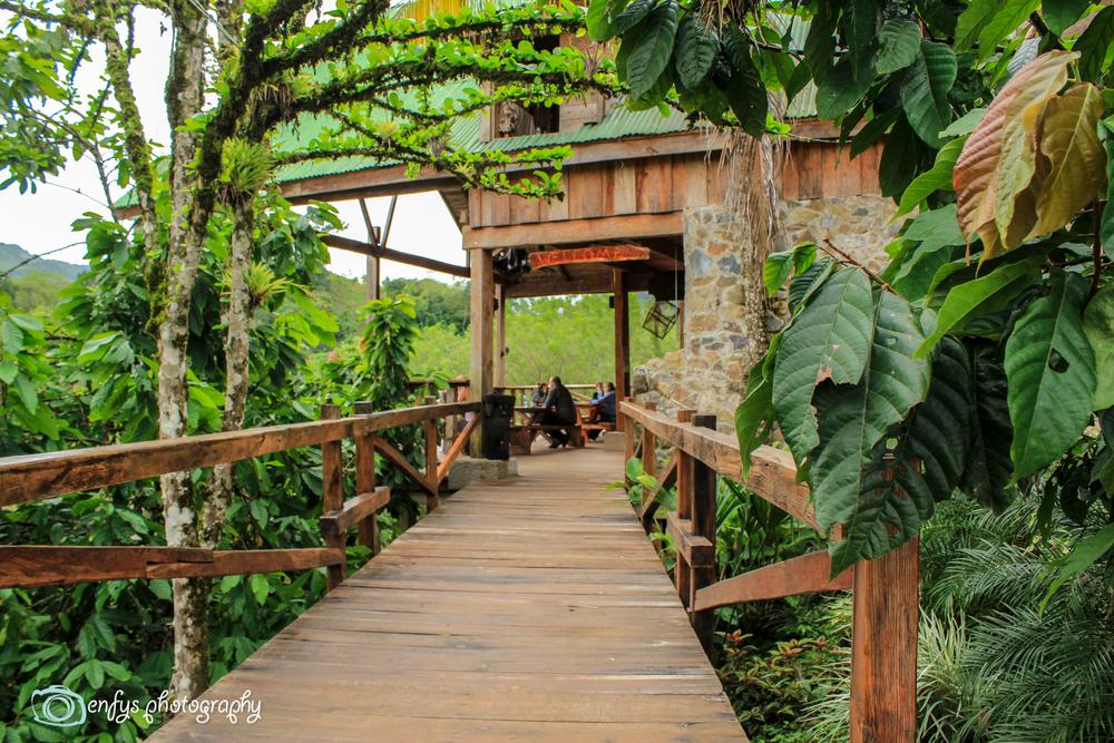 Entrance to the restaurant and lounge area  -  Utopia Eco Hotel- Alta Verapaz, Guatemala