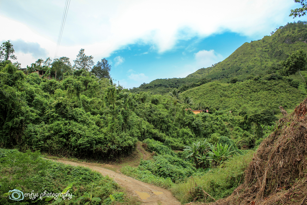 Along the path  - Alta Verapaz, Guatemala