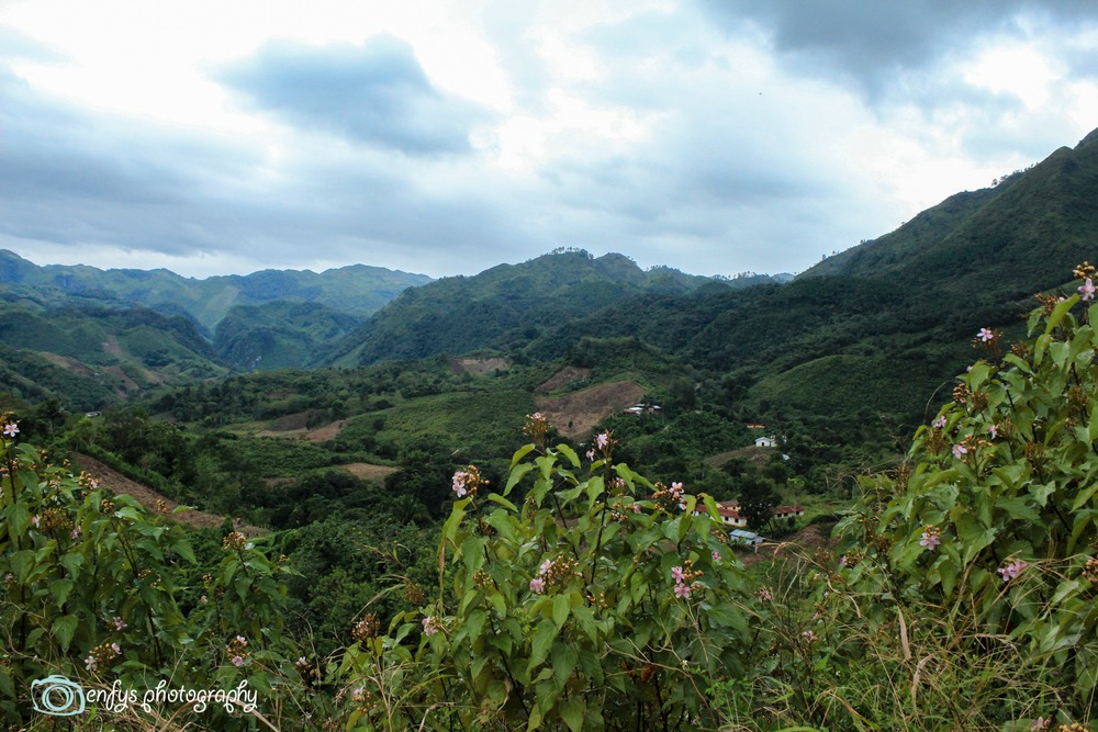 - Alta Verapaz, Guatemala (Click to enlarge)