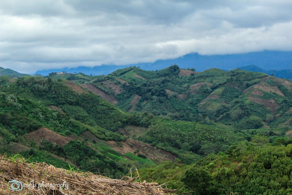 - Alta Verapaz, Guatemala (Clickto enlarge)