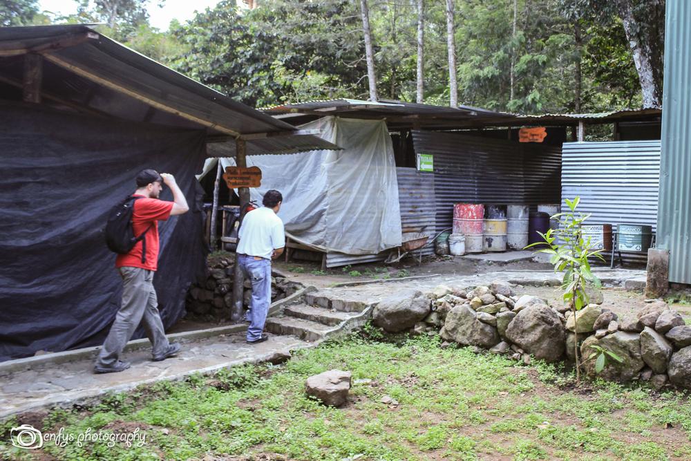 Worm houses -San Pedr la Lagunao, Guatemala