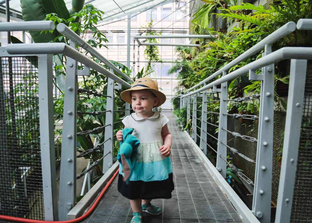 Edie - Cloud Garden-9.jpg