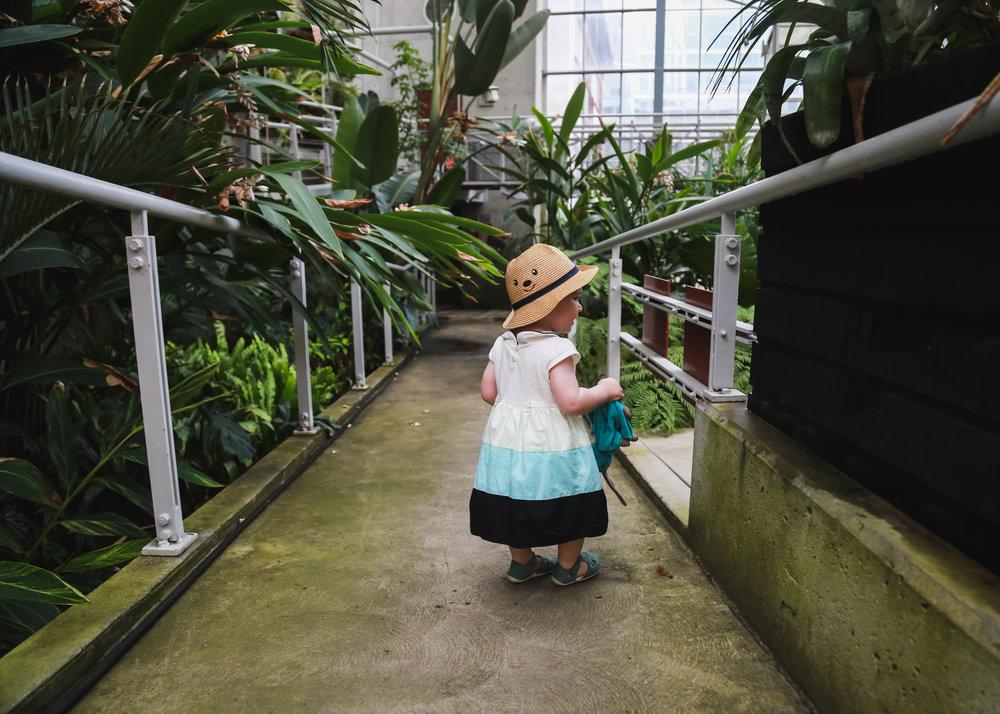 Edie - Cloud Garden-16.jpg