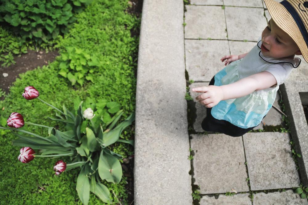 Edie - Cloud Garden-22.jpg