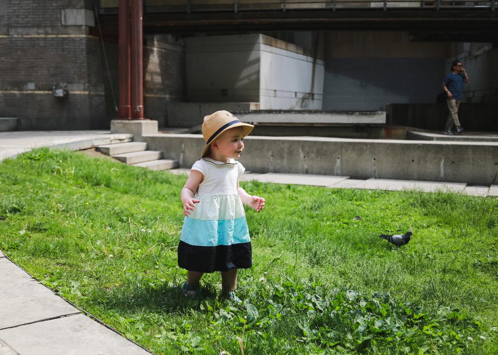 Edie - Cloud Garden-23.jpg