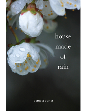 Pamela Porter's House Made of Rain