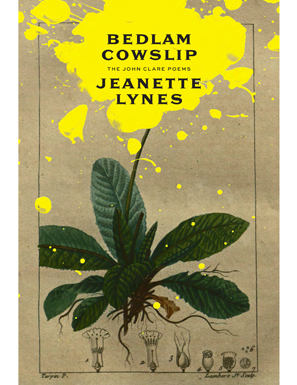 Bedlam Cowslip,  by Jeanette Lynes
