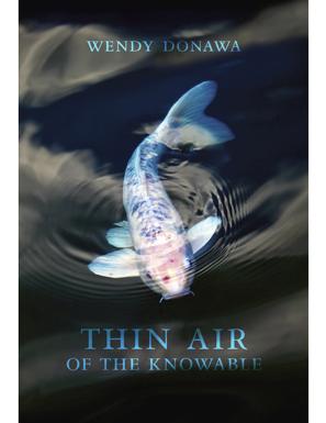 thin_air.jpg