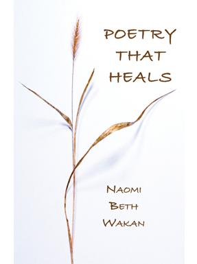 Visit Naomi Beth Wakan's website here