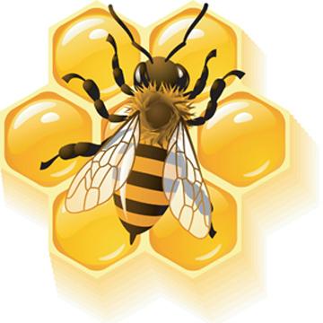iclip #567075 bee.jpg