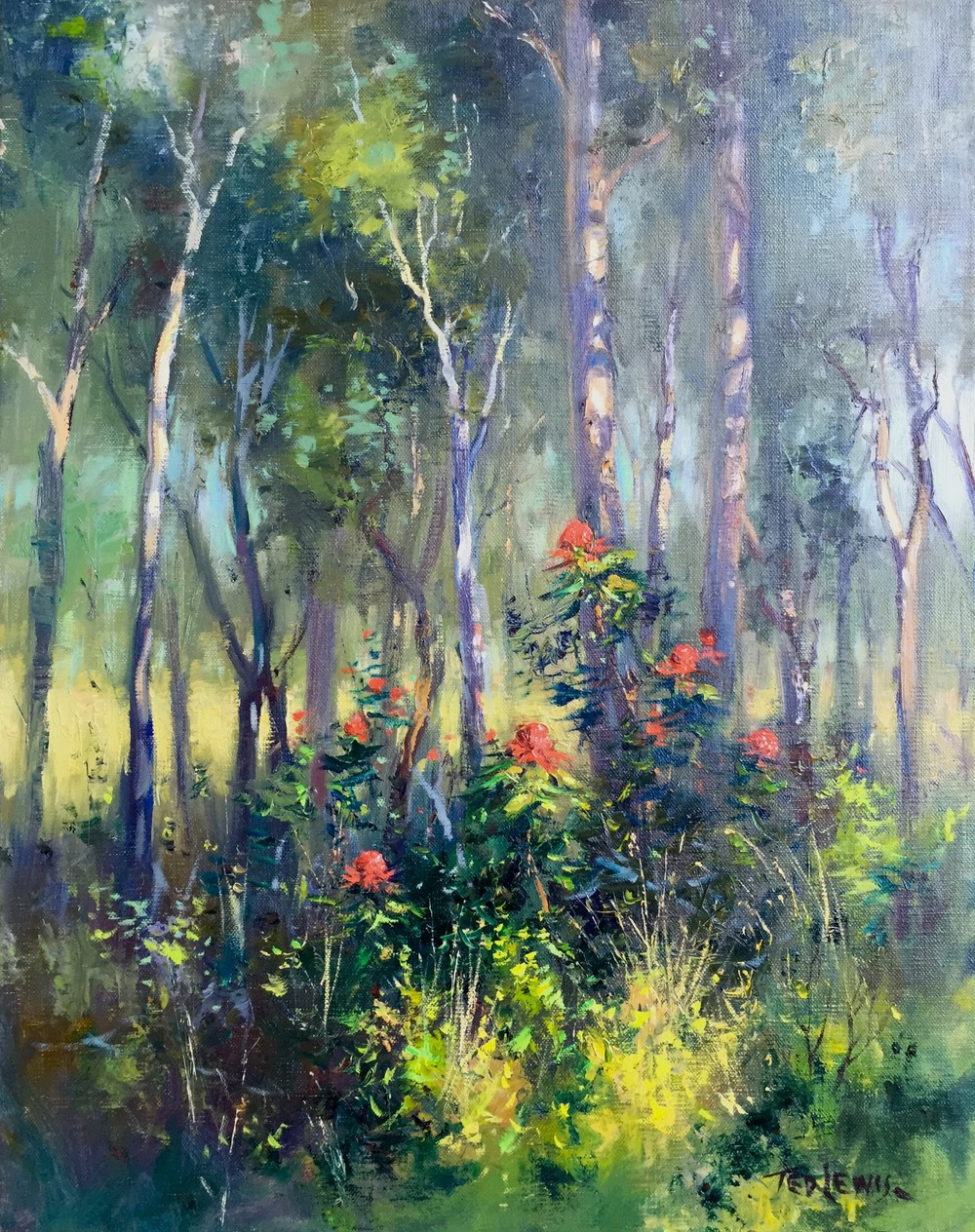 Ted Lewis 'Bush Glow' Oil on Canvas 51cm x 40cm  #14934