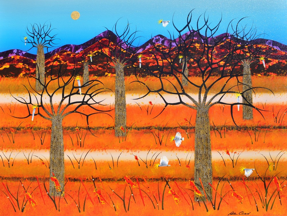 Peter Coad 'Boab Floodplain' 90cm x 120cm canvas #14560