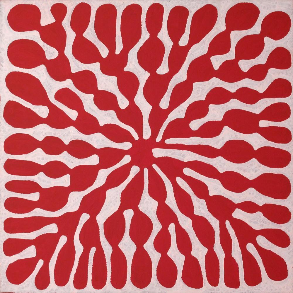 Mitjili Napurrula 'Red Watiya Tjuta' 90cm x 90cm #7654