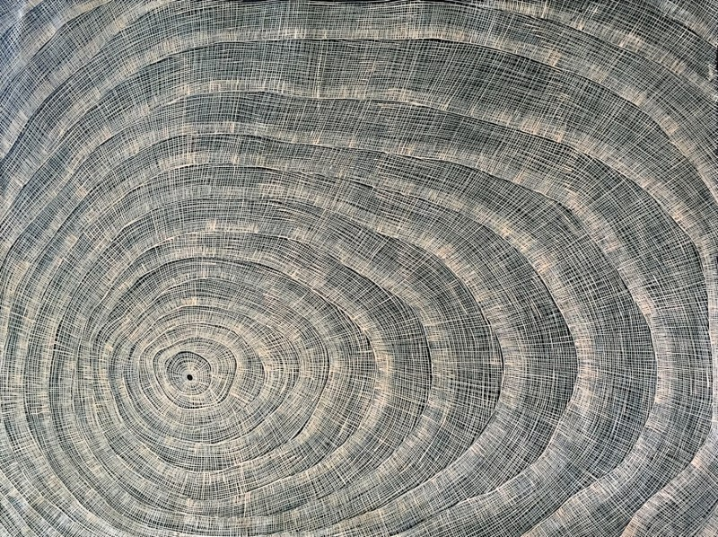 Helen McCarthy  Fish Net Acrylic on Linen 120 x 90 cm  $1250 / Year