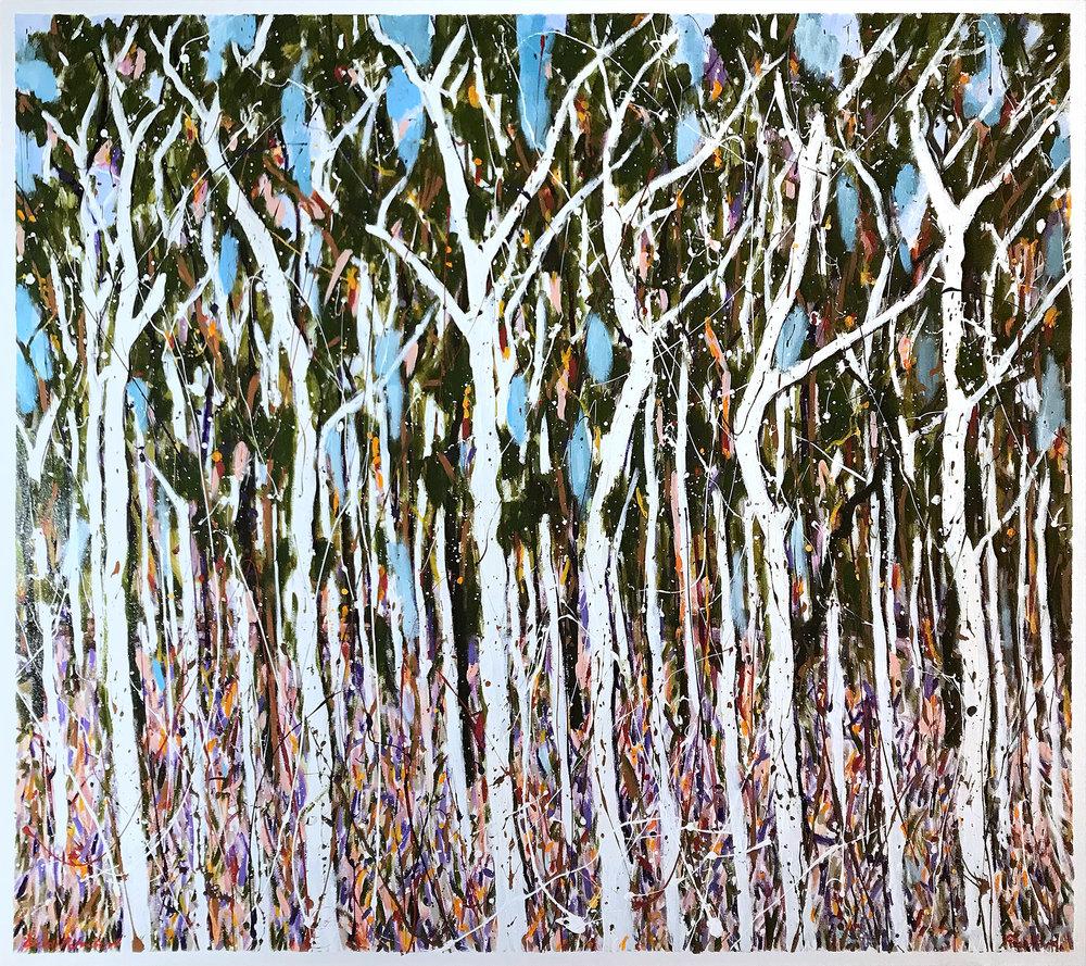 Colin Passmore  Wild Paperbark , 2017 Acrylic on Canvas 150 x 170cm