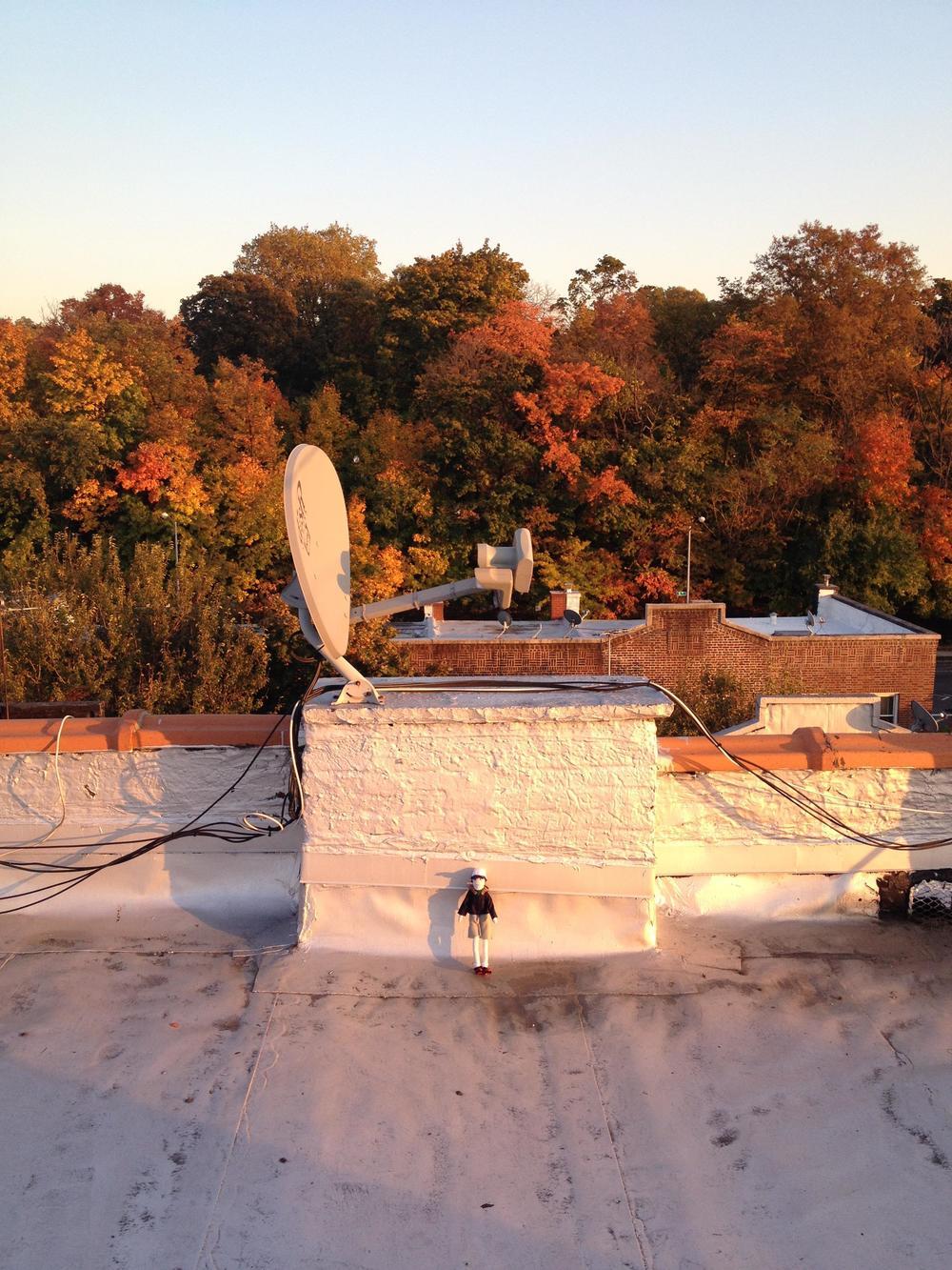 James, Brooklyn rooftop, fall