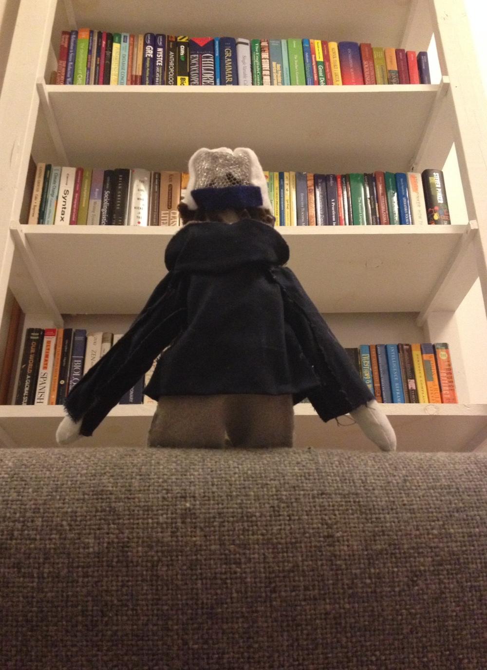 Books on books on books