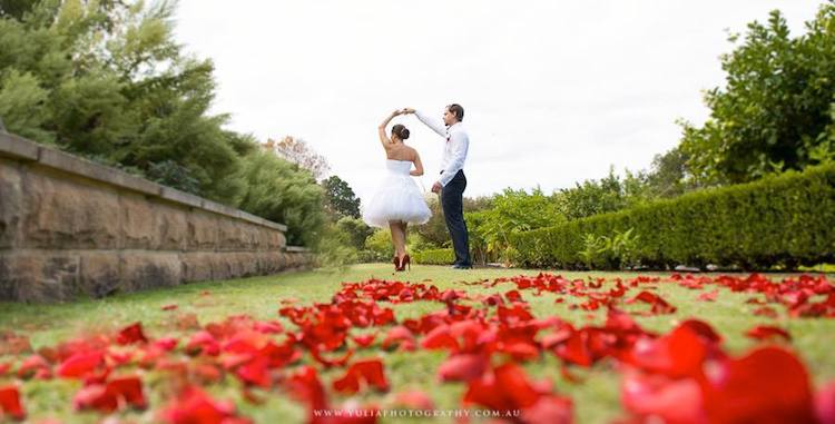 Rose_petals.jpg
