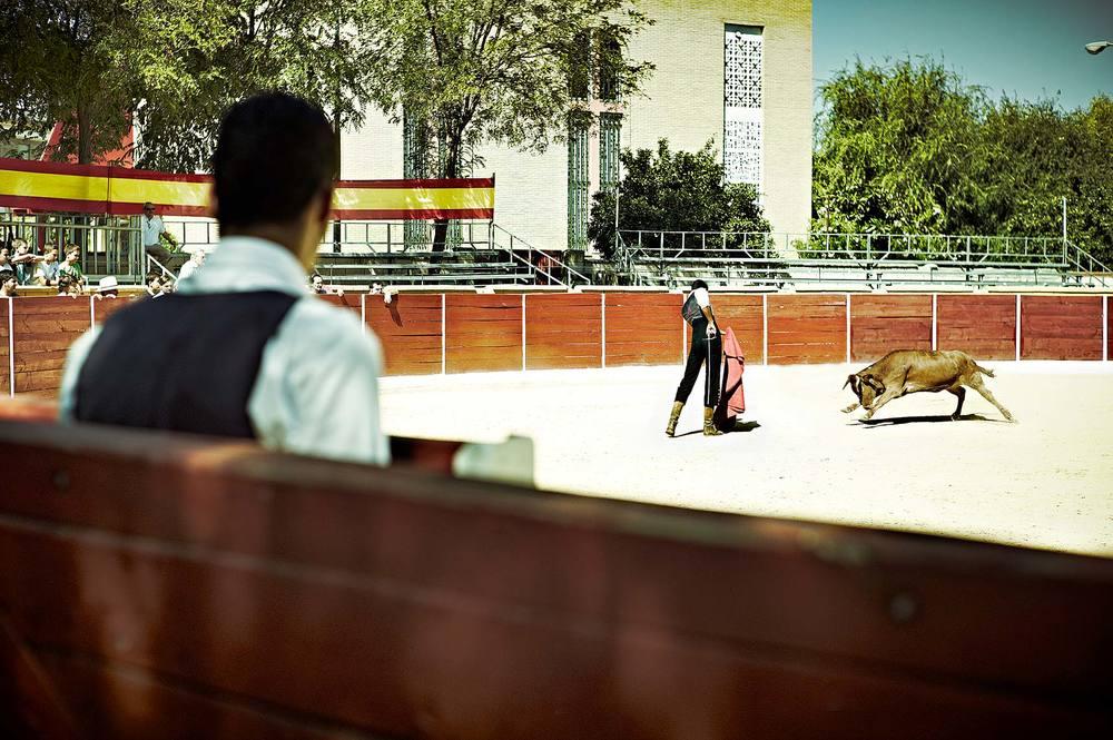 Bullfight1.jpg