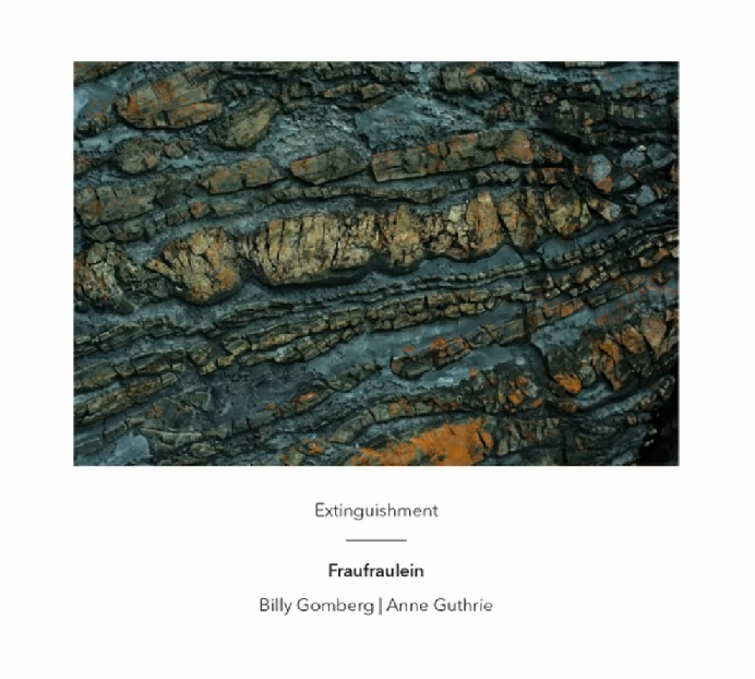 Extinguishment  by  Fraufraulein   Billy Gomberg  (bass guitar, electronics) , Anne Guthrie  (horn, electronics) (Another Timbre, March 2015)