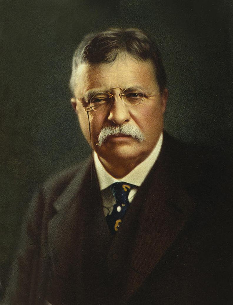 31_Teddy Roosevelt