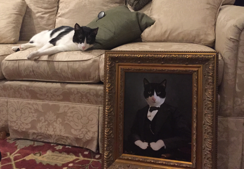 """""""Just wanted to thank you all for the great portrait. My wife and I love it! Stripey approves as well as you can tell from picture of when the portrait arrived. Thanks again!"""" -Tadd"""