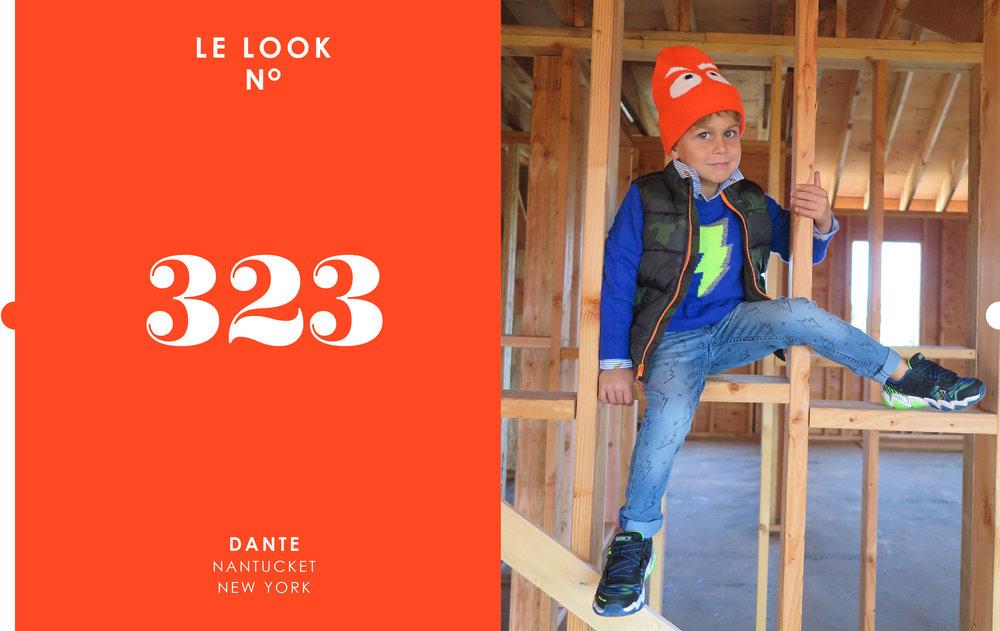 LDJ323.jpg