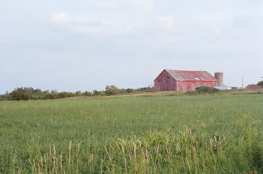 Caledon (or environs) , Ontario; Pentax Spotmatic F, Kodak Portra 400 @ ISO 400