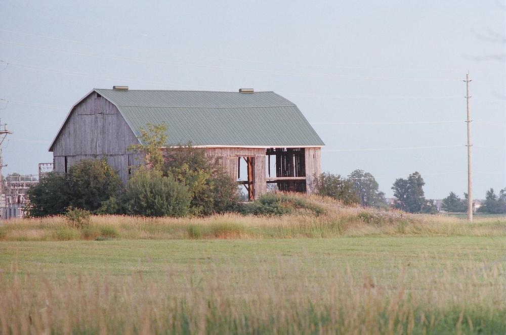 Caledon (or environs)  , Ontario; Pentax Spotmatic F, Super Takumar 200mm f/4.0, Kodak Portra 400 @ ISO 400