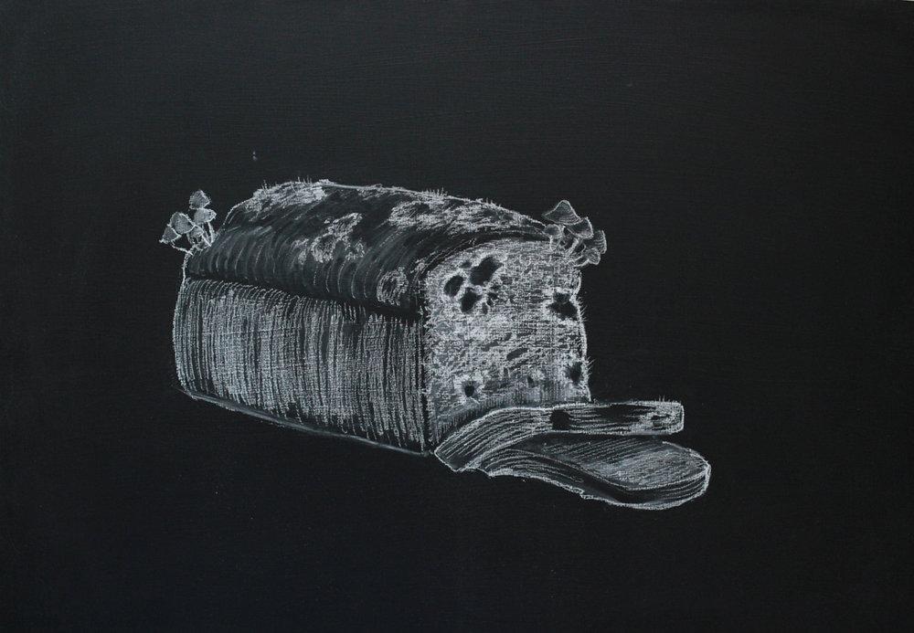 mouldy bread 1200.jpg