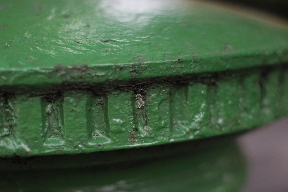 cap lichen 2 2000.jpg