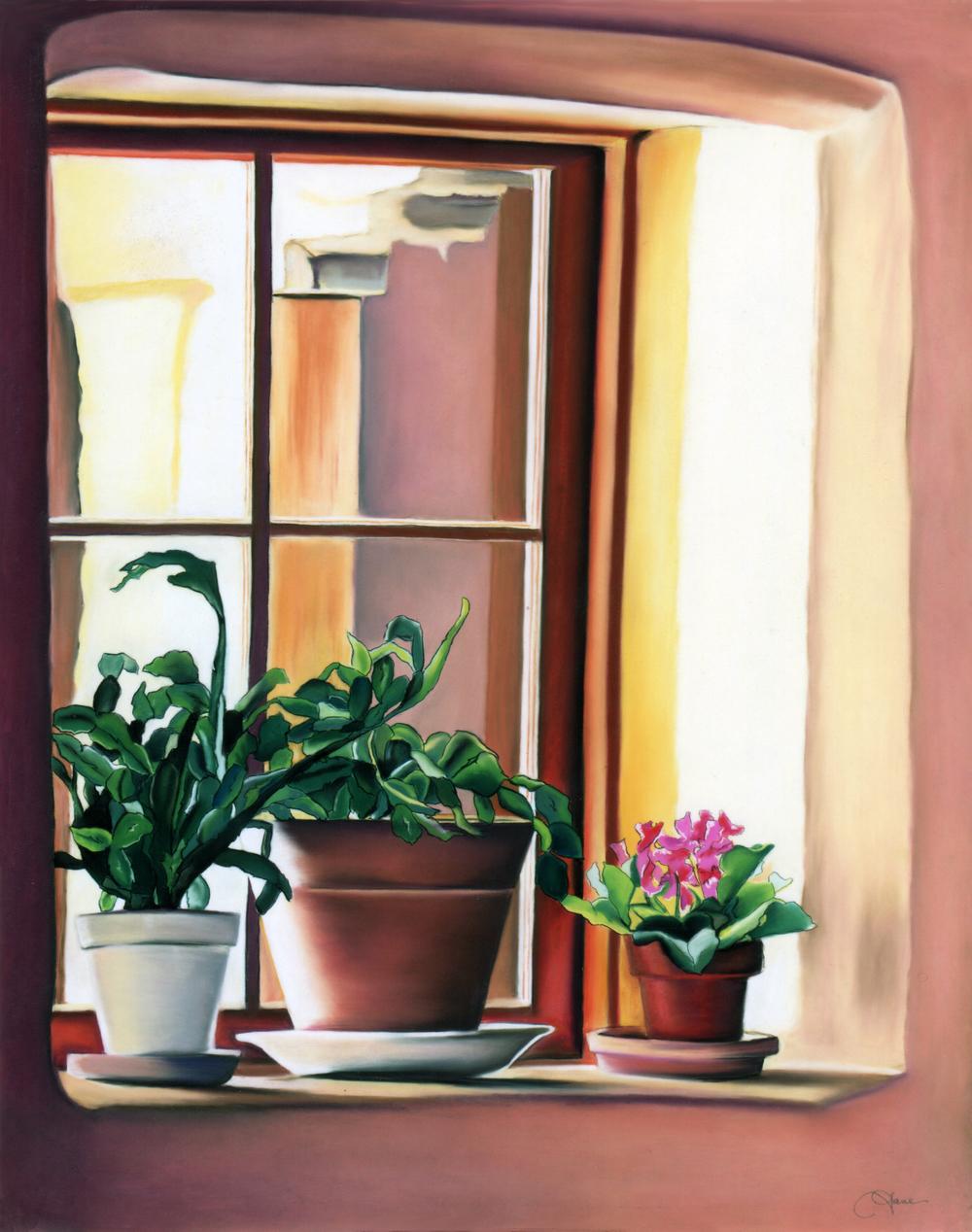 """""""Christmas Cactus"""" pastel, 19x24"""""""