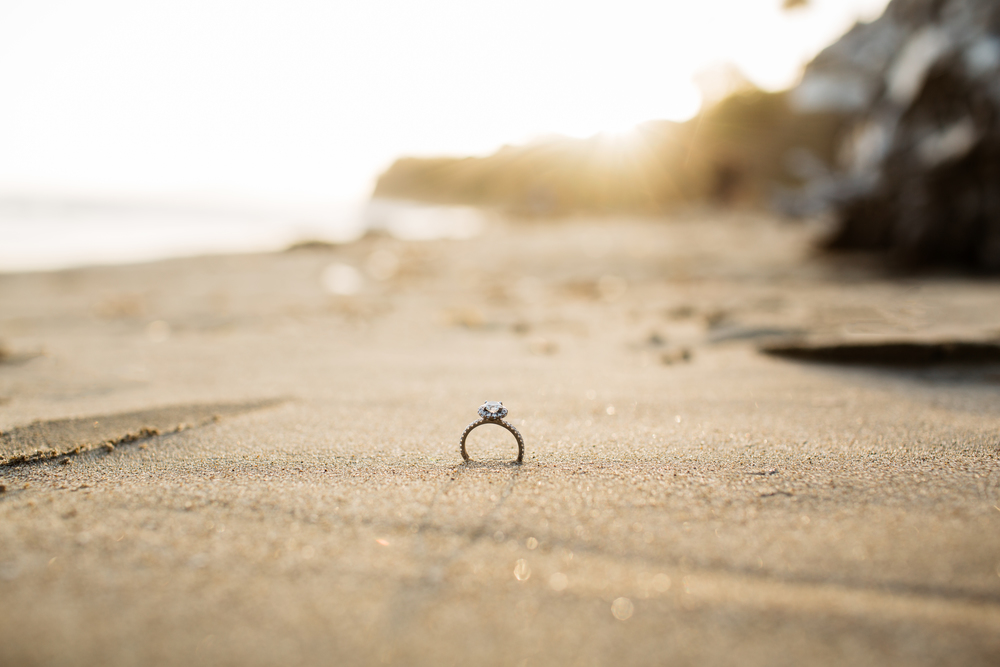 Bouman Engagement02.jpg