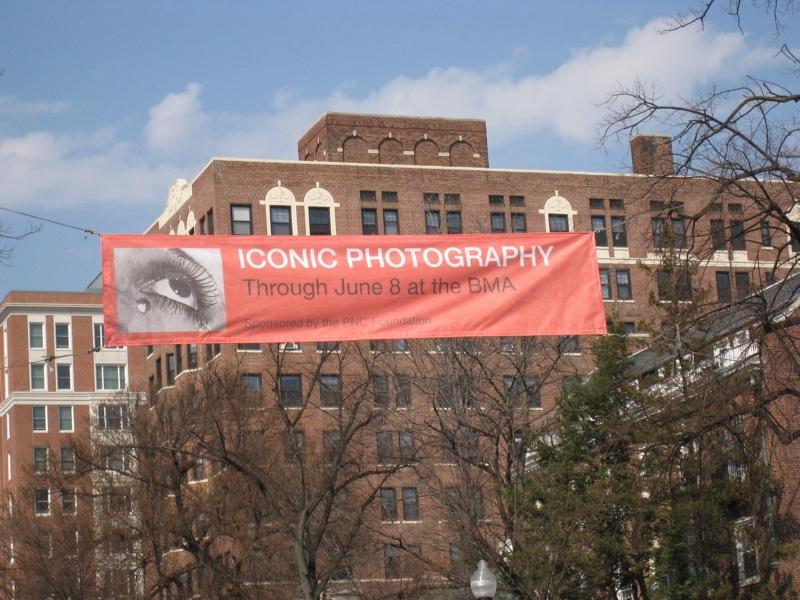 Looking banner.JPG