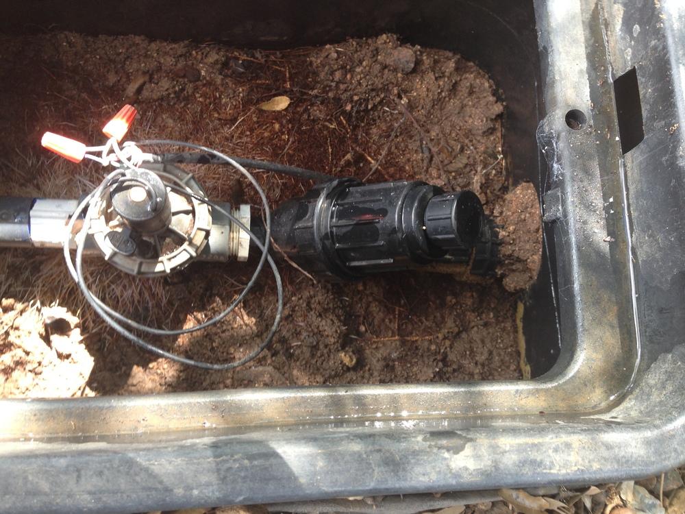 Irrigation valve and unfortunately tree roots