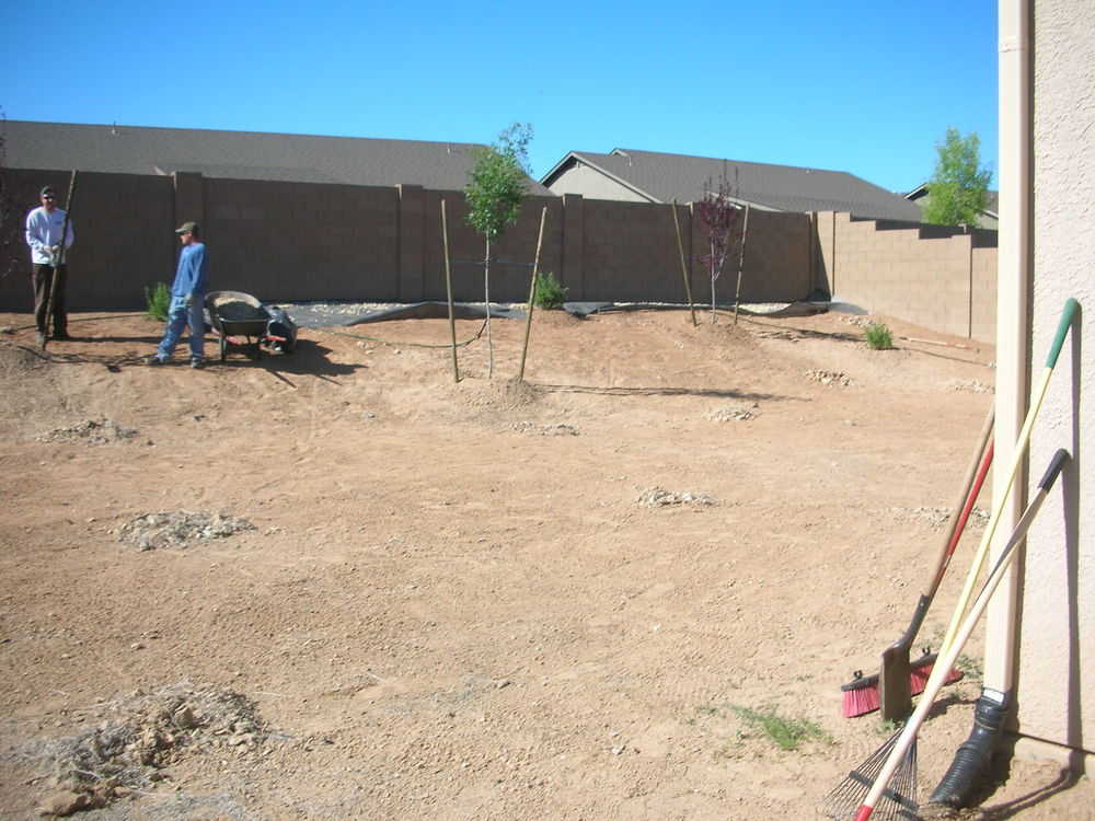 Trees and bushes planted, irrigationa and gravel next