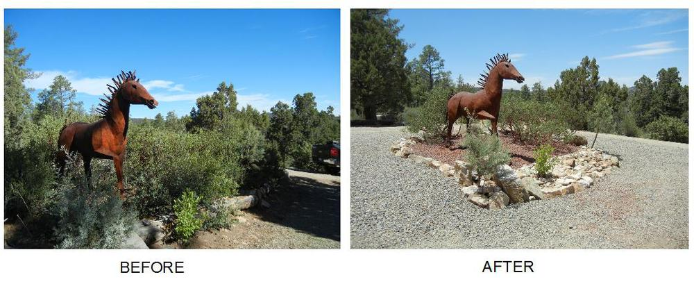 before and after horse.jpg