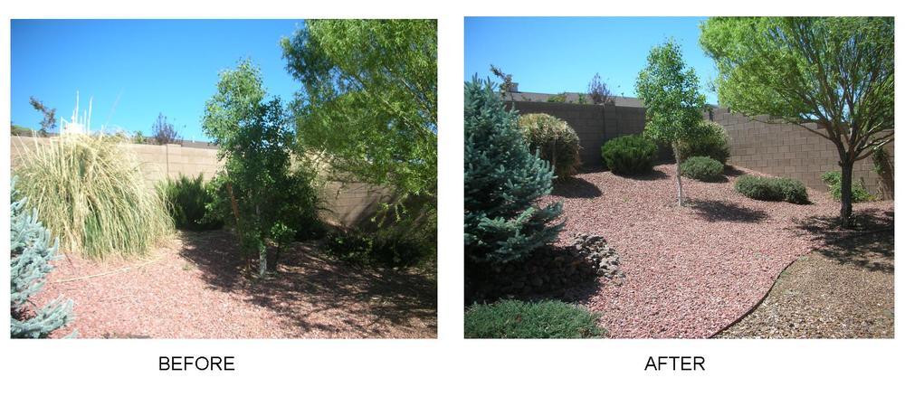 before after backyard.jpg