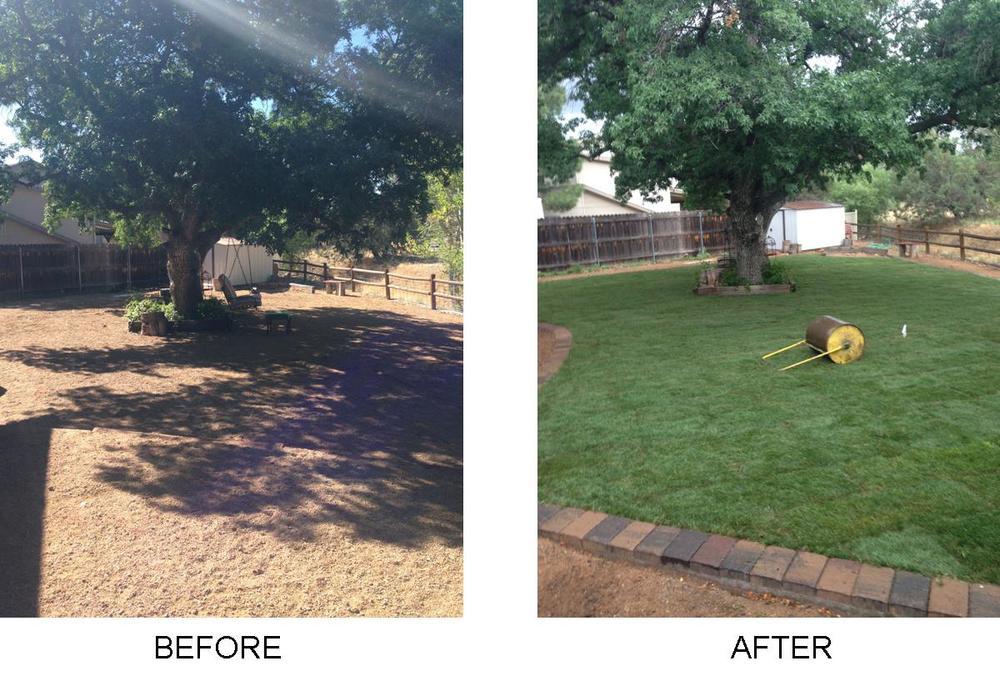 before after grass2.jpg