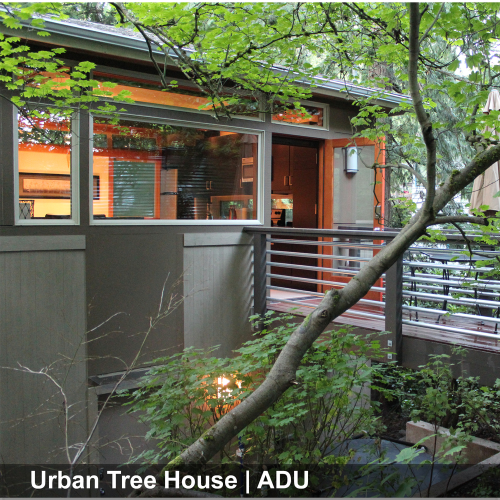 2-Urban-Tree-house0.JPG